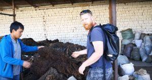 Angelieferte Wolle wird von uns inspiziert :)